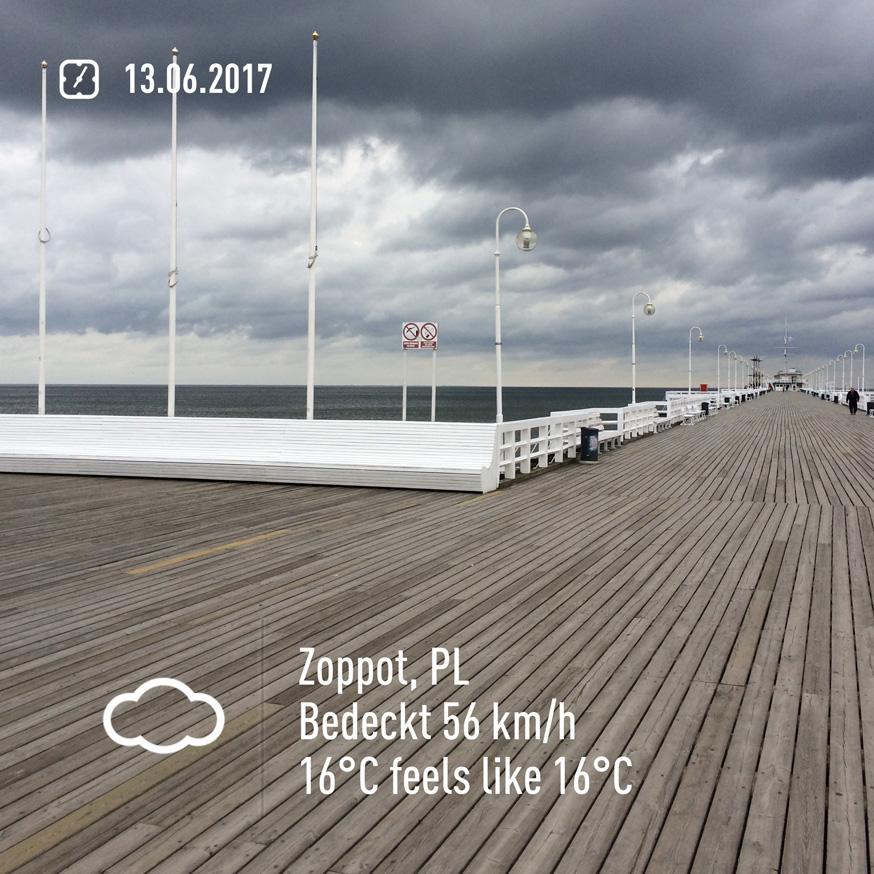 2017-06-13-0705.jpg
