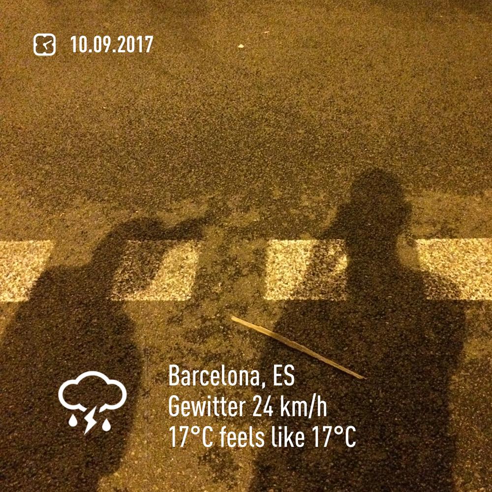 2017-09-10-0511.jpg